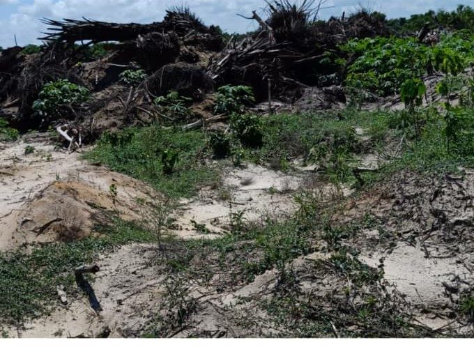 Six (6) Plot of Land (₦4 Million per Plot) with C of O along Lagos Epe Expressway